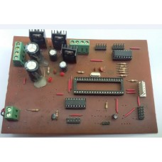 Mother Board_16F877A_DHW-1007B
